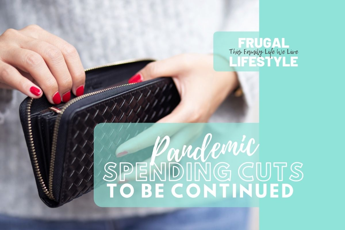 Pandemic Spending Cuts: To Be Continued…